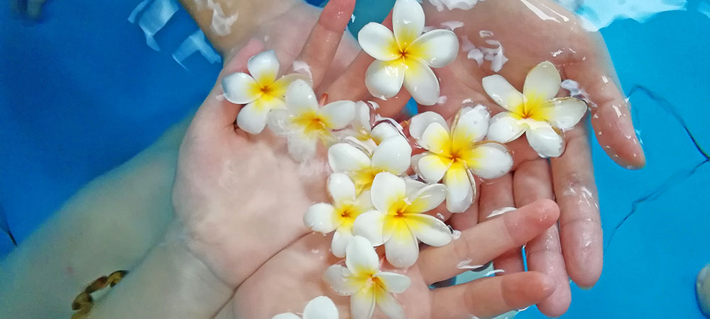 flores de piscina